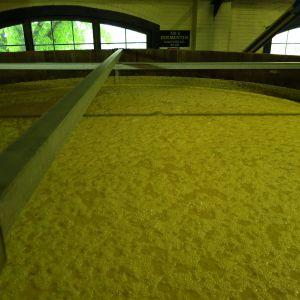 08-fermenter-1